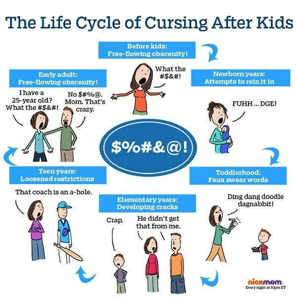 my early adulthood Life stage - early adulthood 18- 45yrs discussion of changes and development.